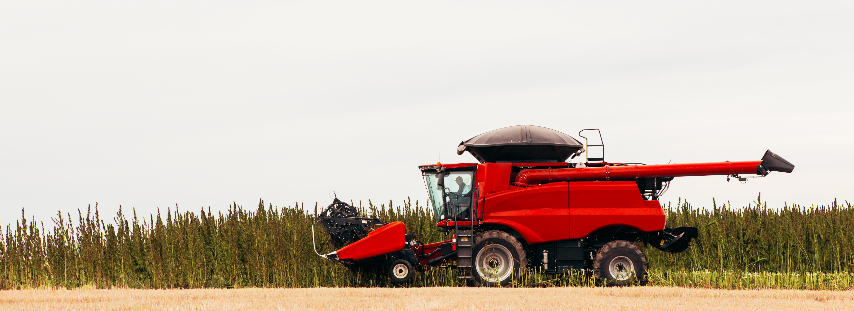 Harvesting – Colorado Hemp Processing Cooperative